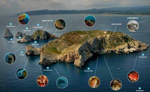 L'estartit…. Les sites de plongée aux îles Medes